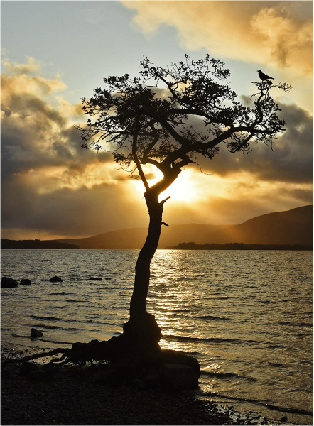 Loch Lomond Sunset by MalcolmM