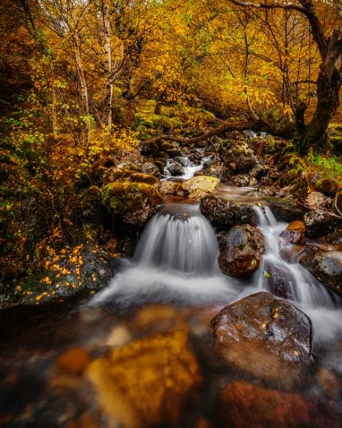 Autumn Glencoe. by Mark_Callander