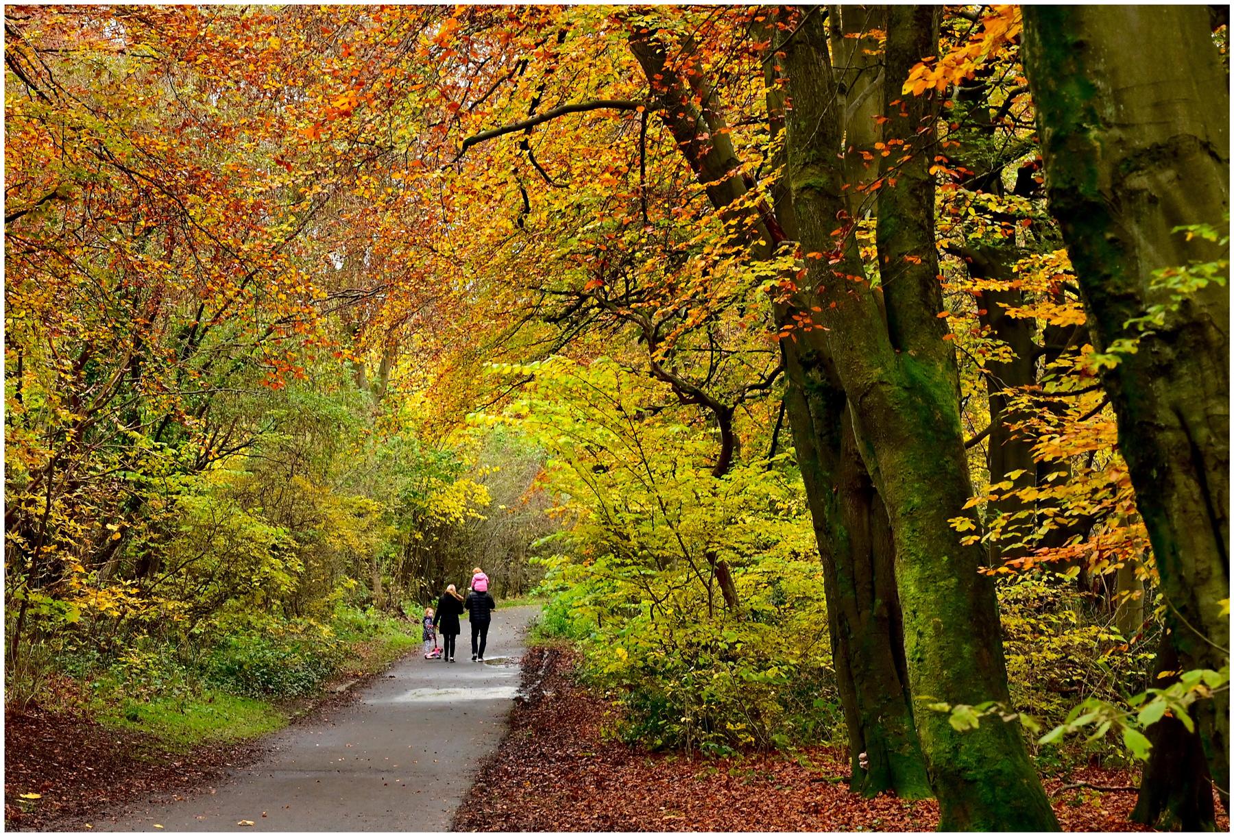 """Strolling Through Autumn"""