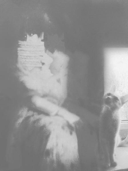 lettre d`amour avec chaton by lostrita