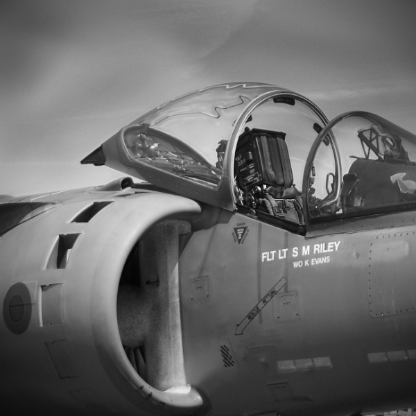 Harrier pilot gone to lunch by Groche