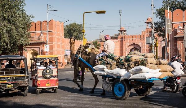 Jaipur traffic jam by PhilScot