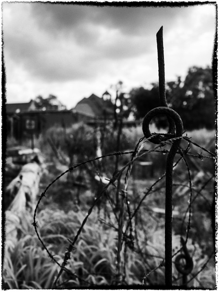 The Old Barbed Wire by woolybill1