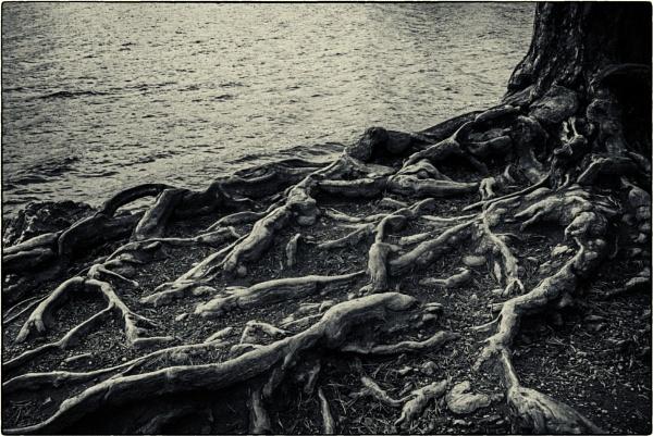 Derwentwater by mrswoolybill