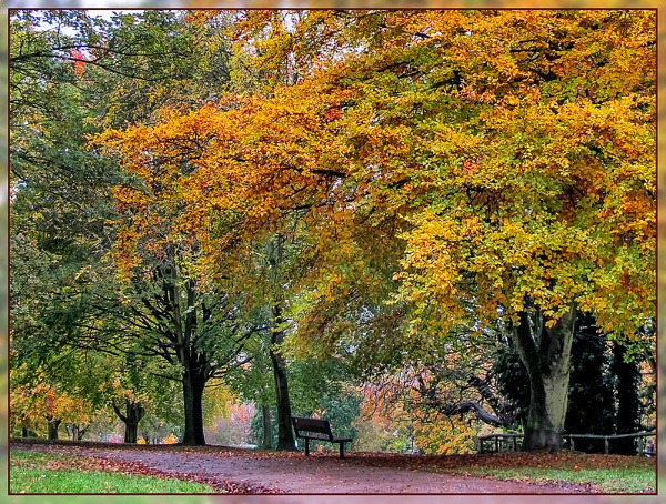 Autumn In The Park by Sylviwhalley