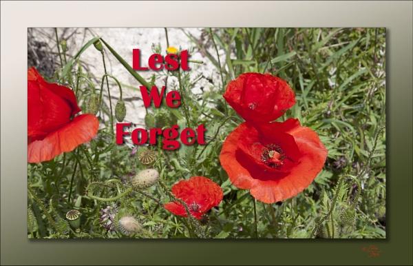 Remembrance by LynneJoyce