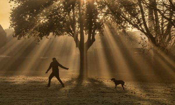 Fetch by Jasper87
