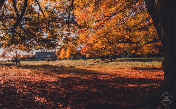 Under The Autumn Sun by Jodyw17