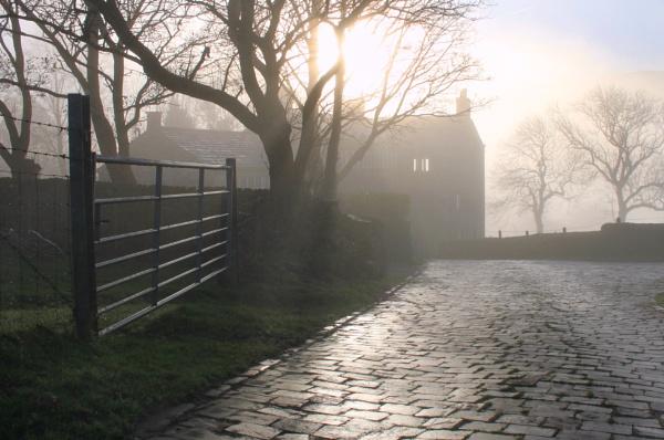 Autumn morning at Fur Lane Farm. by michaelfox