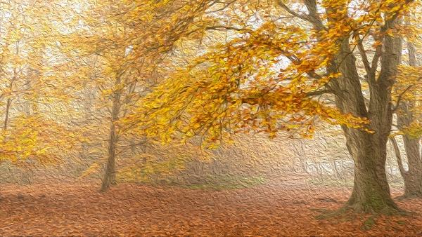 Autumn Impressionism by trusth