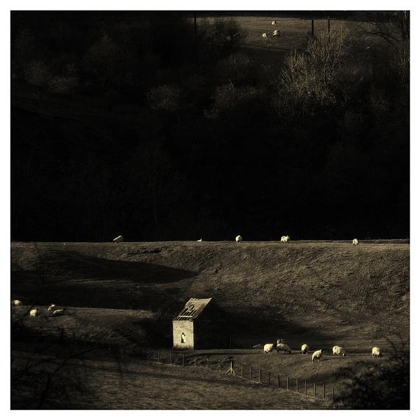 Shepherd\'s hut ruin, Weardale. by whatriveristhis