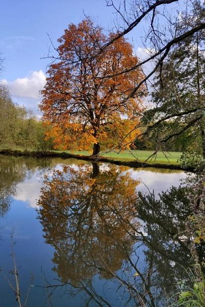 beautiful autumn by jeakmalt