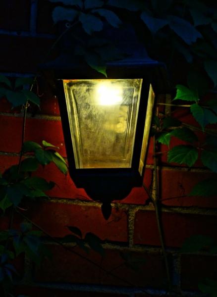 Soft light by SauliusR