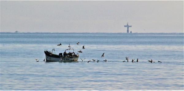 Fishing boat scavangers by mike9005