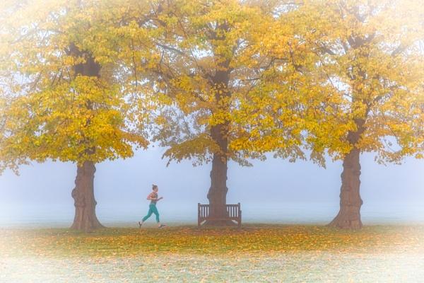 Jog in the fog by Jasper87