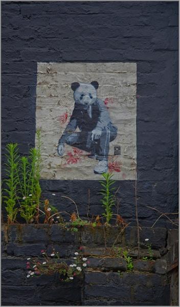 panda man... by estonian