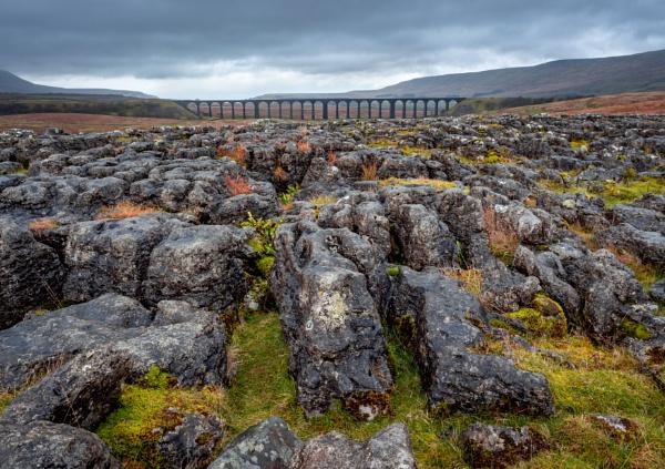 Limestone Pave Ribblehead by Skyerocket