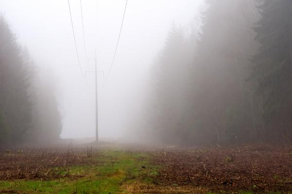 In a fog by grulis
