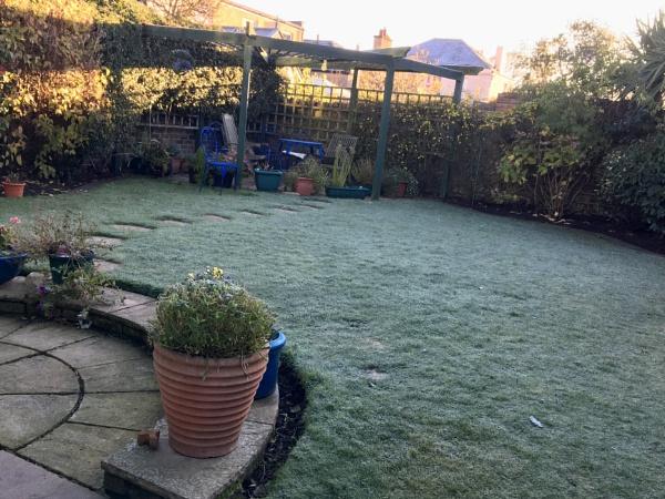 Frosty Garden. by Pinarellopete