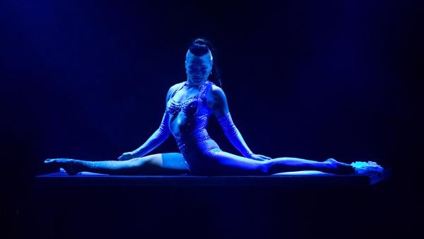 The Gymnast by sandwedge