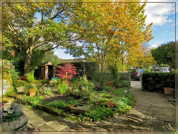 Autumn Garden by Sylviwhalley