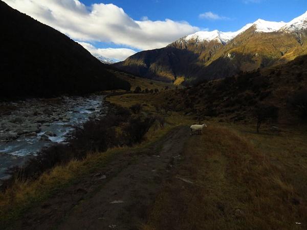 Mt Aspiring NP 14 by DevilsAdvocate