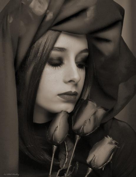 Gothic portrait. by mex