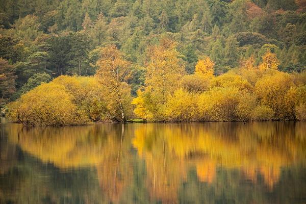 Autumnal Derwent by rontear