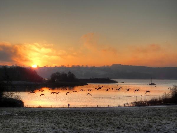 Early Morning Flight by ianmoorcroft