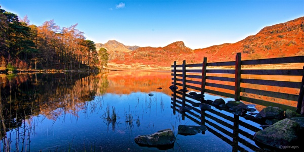 The Langdales Across Blea Tarn In Autumn by gpimages