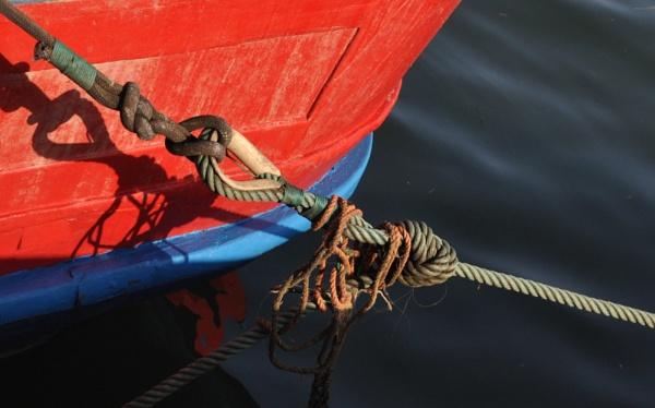 Boatabilia  & ropes !! by Chinga