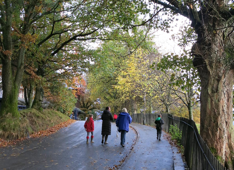 taking an Autumnal walk