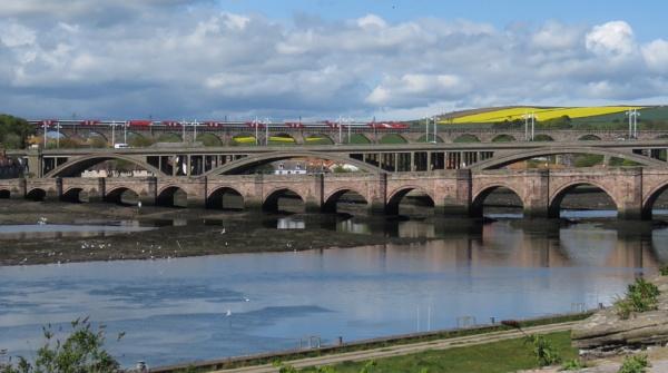 Three bridges.  Crossing the river Tweed by derekp