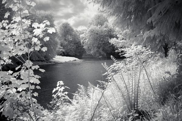 River Esk by TrotterFechan
