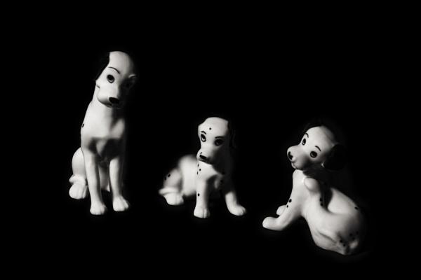 Spotty Dogs by TrotterFechan