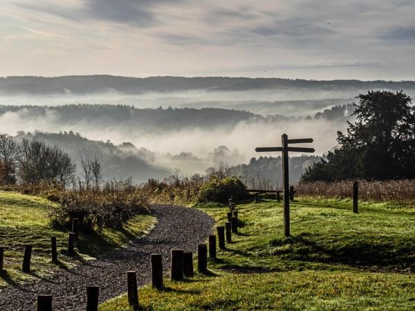 Newlands Mist by RosieLee