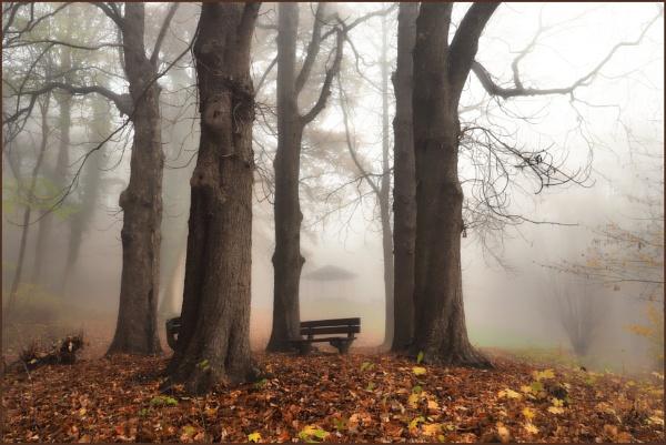 Romantic Autumn by kw
