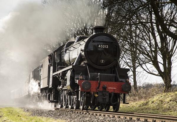 Steam train by Fleck