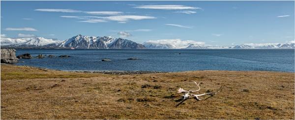 Svalbard in summer by mjparmy