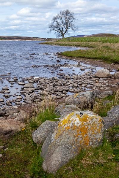 View of Lochindorb by Phil_Bird