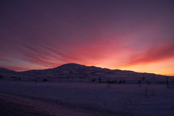 Dawn brings by mlseawell