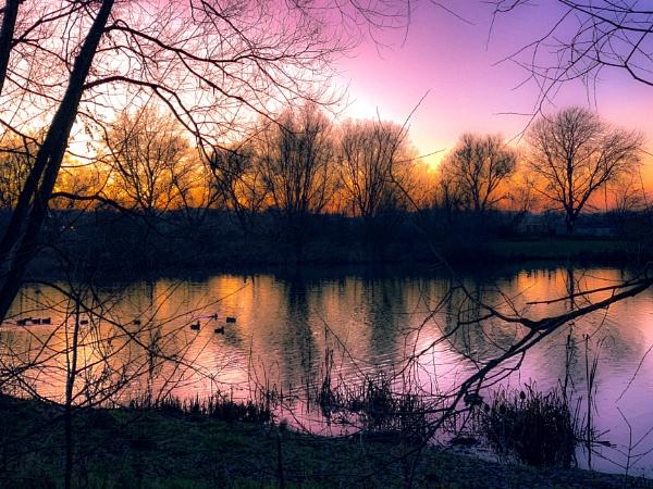 Twilight by RLF