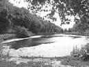 Creswell Pond -  Very Wet. by Gypsyman