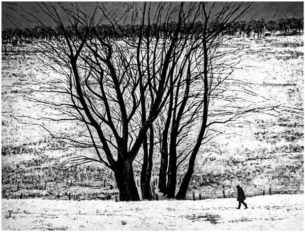Lone Walker by mac