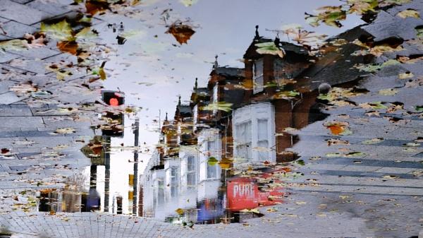 Reflection by marcsneddon