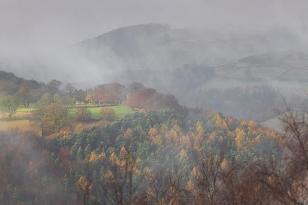 Rising Mist by Trevhas