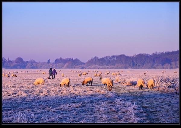 Winter Walkers by Howard2