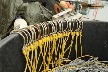 Long line hooks
