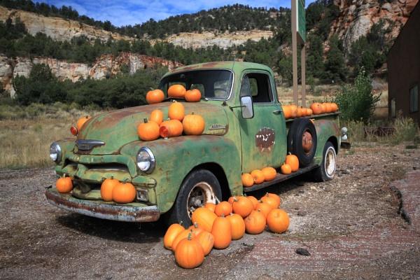 Pumpkin sale by Fleck