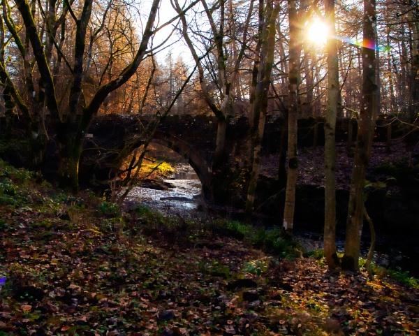 Bowlees Bridge by aitchbrown